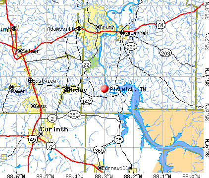 Pickwick, TN map