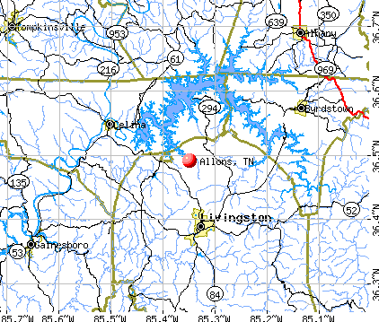Allons, TN map