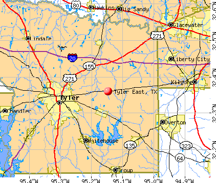 Tyler East Texas TX Profile Population Maps Real Estate - Map of east texas