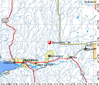 Wynoochee, WA map