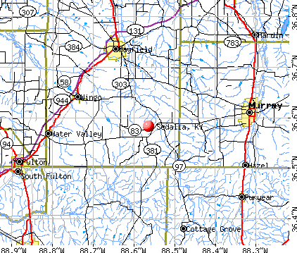 Sedalia, KY map