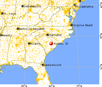 Alcolu, South Carolina map