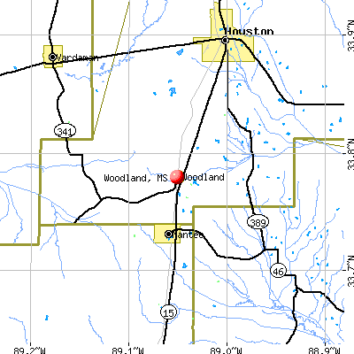Woodland, MS map