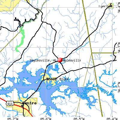 Gaylesville, AL map