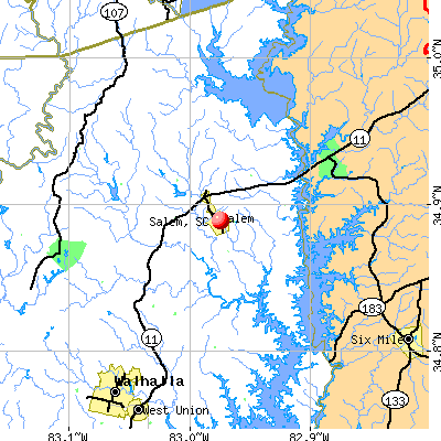 Salem, SC map