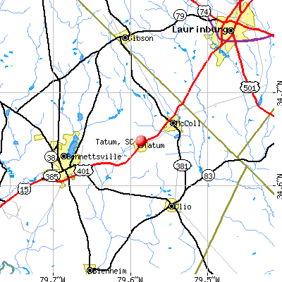 Tatum, SC map