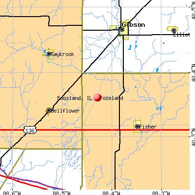 Foosland, IL map