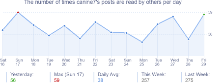 How many times canine7's posts are read daily