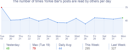 How many times Yorkie Bar's posts are read daily