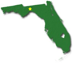 Florida Smaller Cities Towns And Villages Between And - Map of florida city